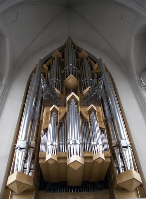 11_Organ_Ship